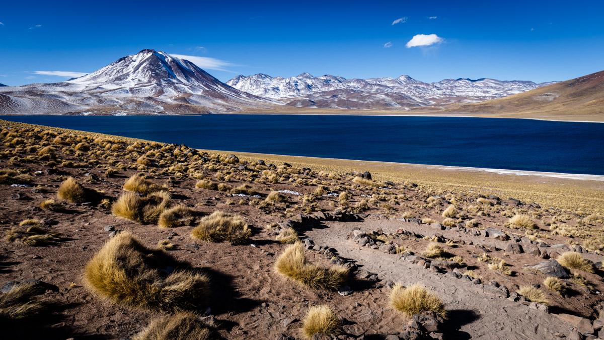 Lagune Miscanti, désert d'Atacama