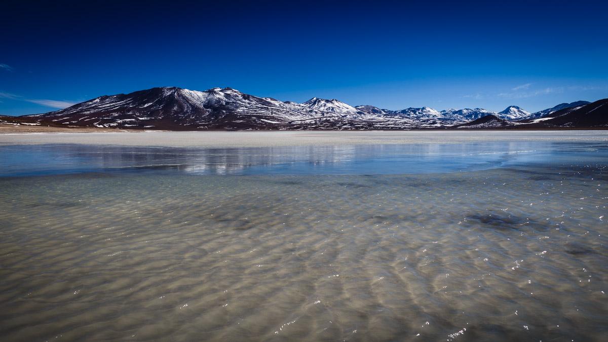 Lagune Blanche, Réserve nationale de faune andine Eduardo Avaroa