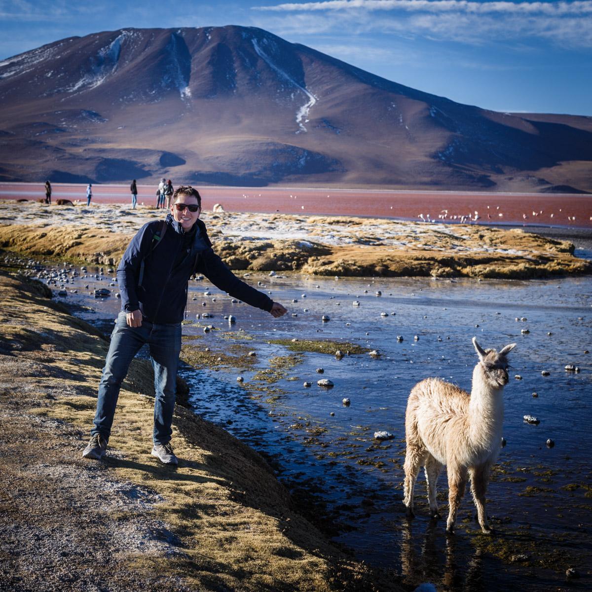 Lagune Colorée, Réserve nationale de faune andine Eduardo Avaroa
