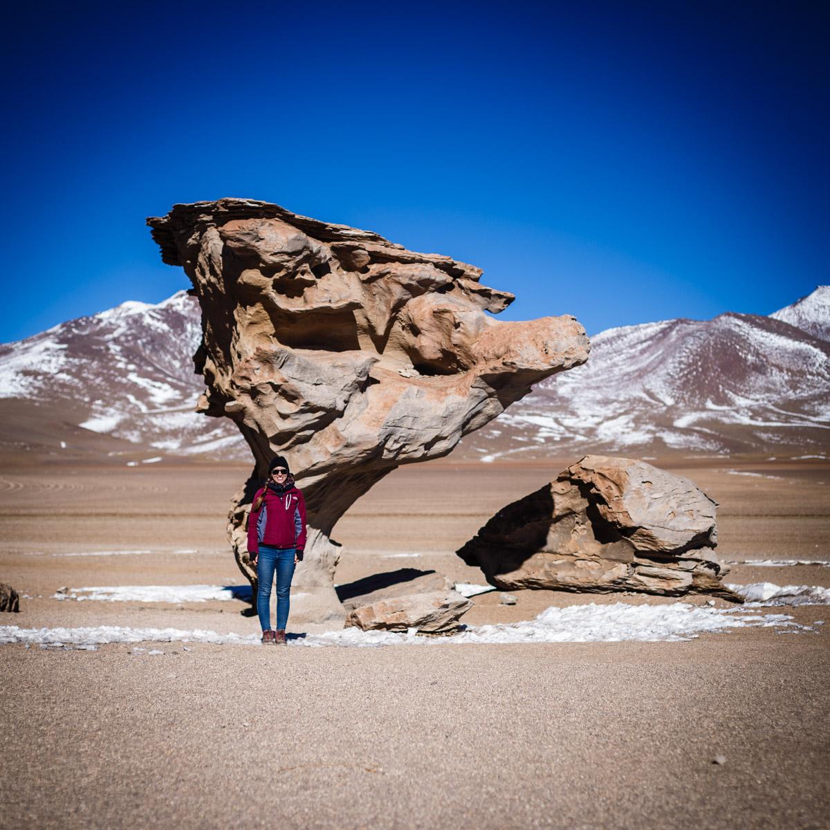 Arbre de pierre, désert Siloli